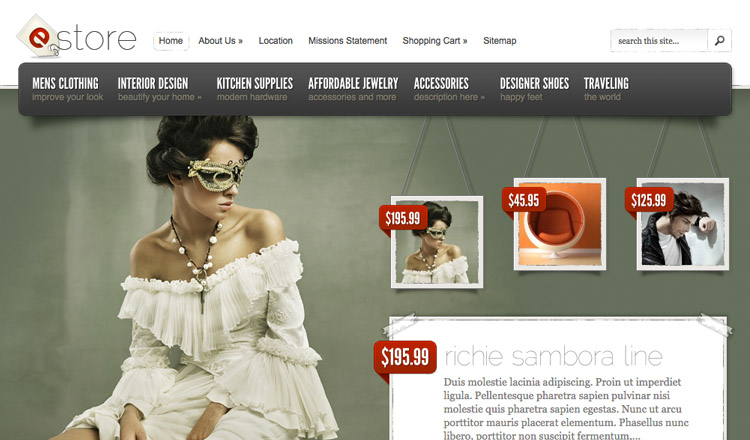 eStore - Best Ecommerce WordPress Theme 2013