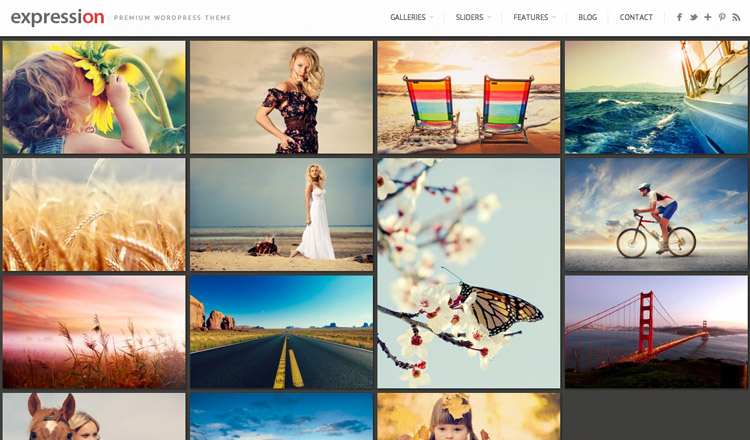 Expression - Best Photography WordPress Theme 2014