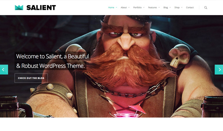 Salient - Best Responsive WordPress Theme 2013