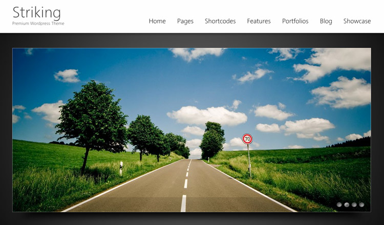 Striking - Best HTML5 WordPress Theme 2013