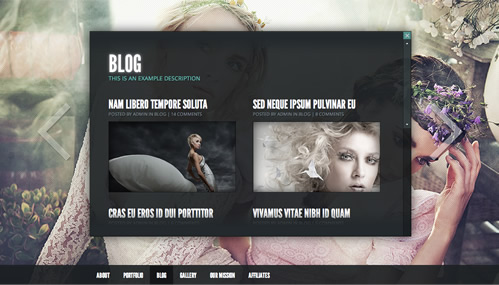 Gleam Photography WordPress Theme - Blog