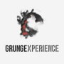 Grungexperience Premium WordPress Theme