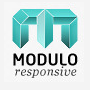 Modulo Premium WordPress Theme