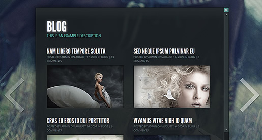 Gleam - Best Photography WordPress Theme 2012