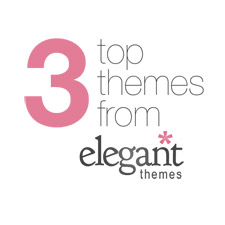 3-top-themes-from-elegant-themes-225