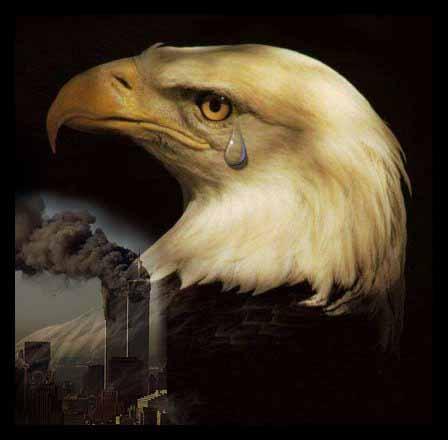 9-11-eagle