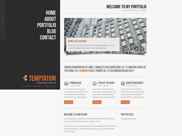 Temptation - Single Page WordPress Theme 2012