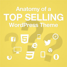 anatomy-of-a-top-selling-wordpress-theme-225