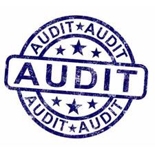 audit-225