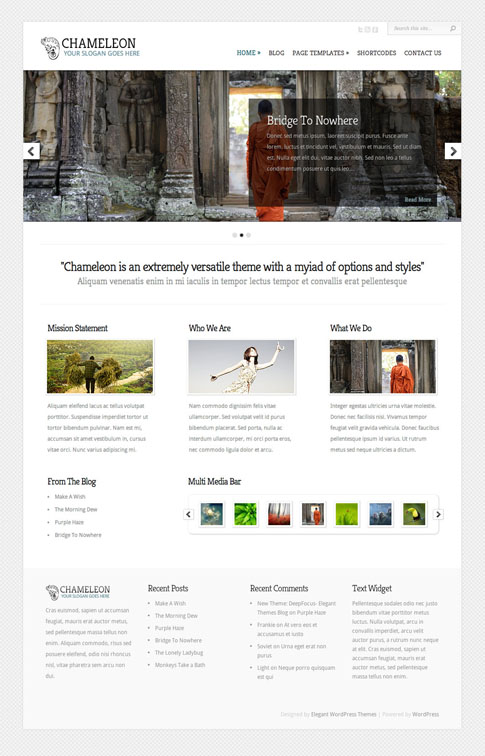 Chameleon Premium WordPress Theme