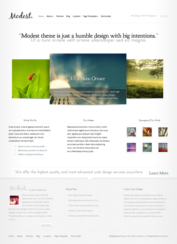 Modest Premium WordPress Theme
