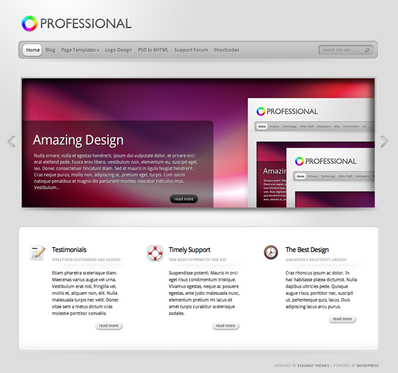 TheProfessional Premium WordPress Theme