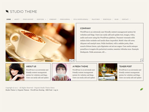Studio Premium WordPress Theme