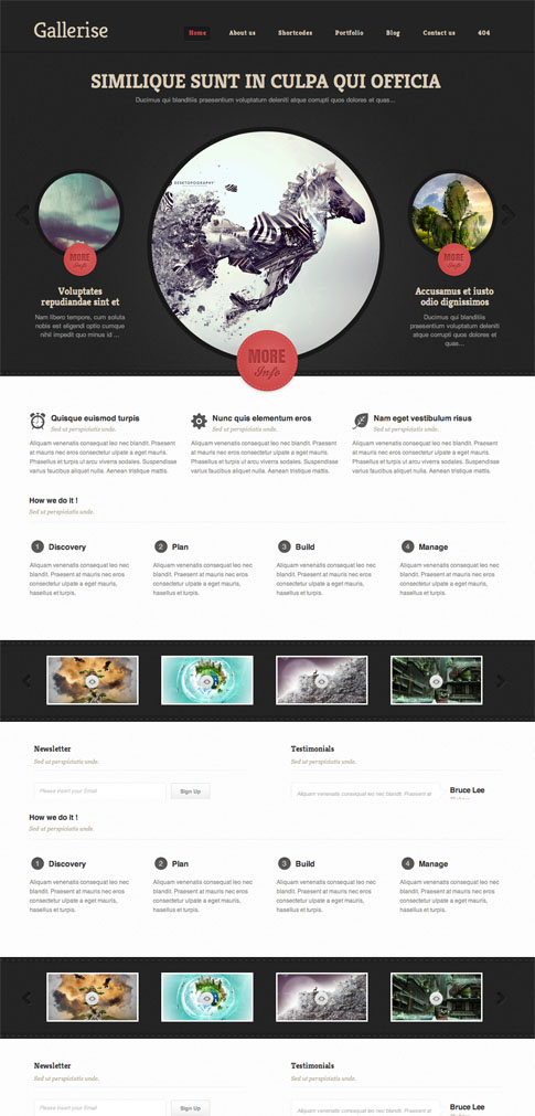 Gallerise Premium WordPress Theme