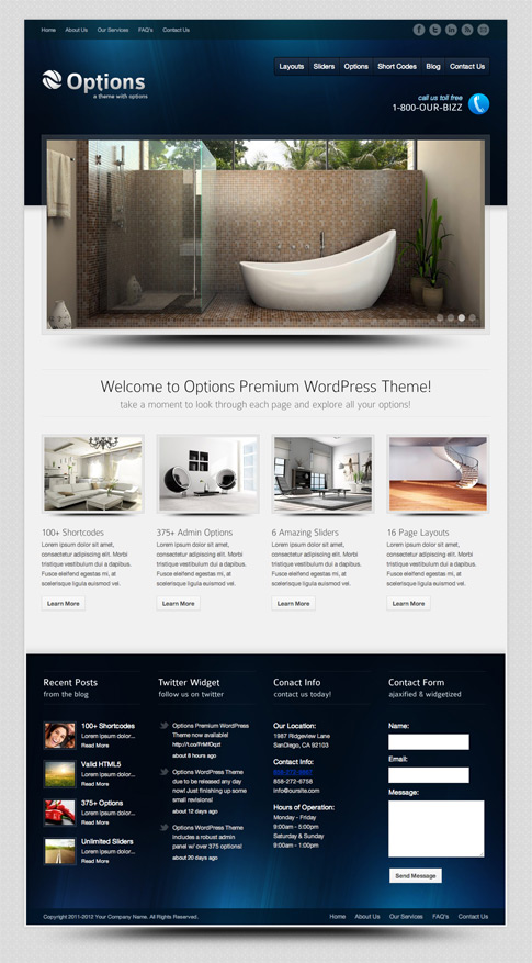 Options Premium WordPress Theme
