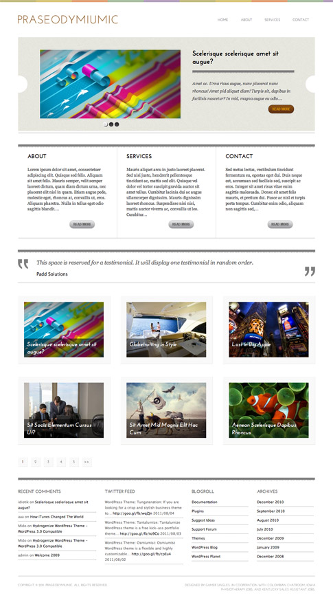 Praseodymiumic Free WordPress Theme