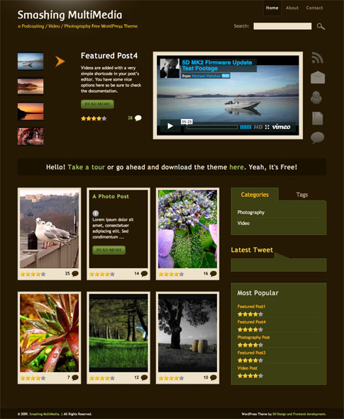 Smashing Multimedia Free WordPress Theme