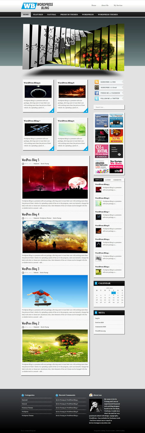WordPress Bling Free WordPress Theme
