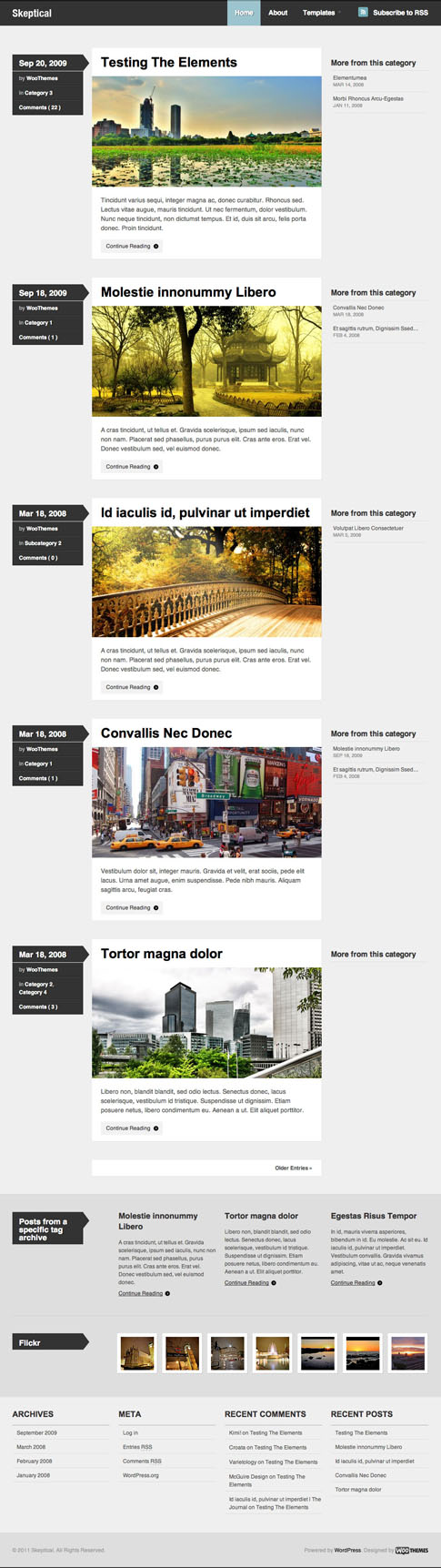 Skeptical Free WordPress Theme