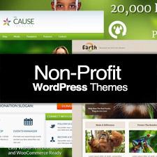 nonprofit-225