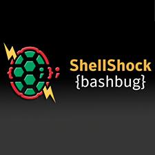 shellshock-225