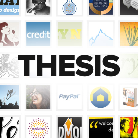 is thesis the same as theme