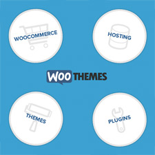 woothemes-the-reboot-225