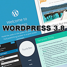 wordpress38-225