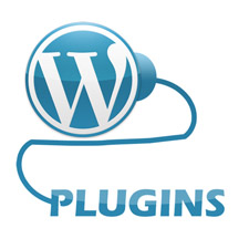 wp-frontplugin-225