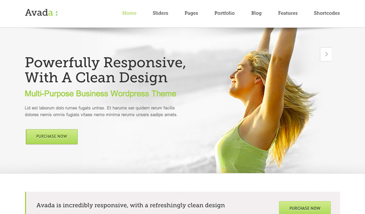 Avada - Best Responsive WordPress Theme 2013