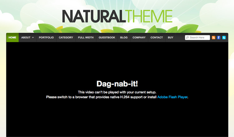 Natural - Best Business WordPress Theme 2013