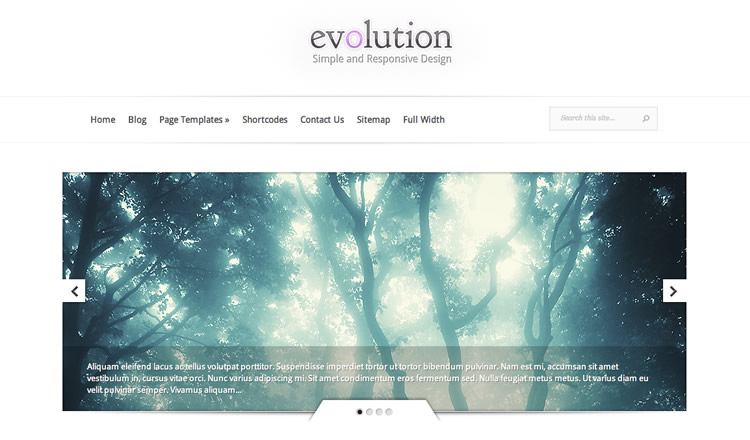 Evolution - Best Responsive WordPress Theme 2012