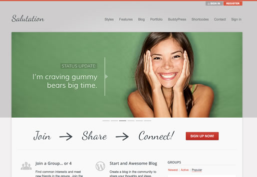 Salutation - Best BuddyPress WordPress Theme 2012