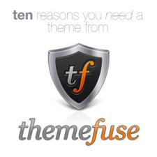 10-reasons-you-need-a-theme-from-themefuse-225