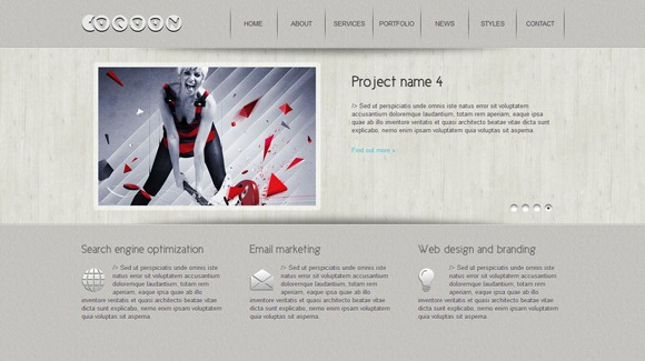 Cocoon - Single Page WordPress Theme 2012