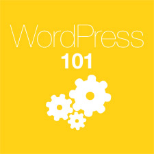 beginners-guide-to-learn-about-wordpress-225
