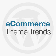 ecommerce-theme-trends-2013-225