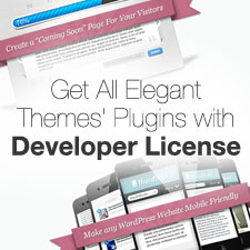 get-all-elegant-themes-plugins-with-developer-license-225