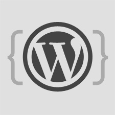 how-to-make-your-first-wordpress-theme-225